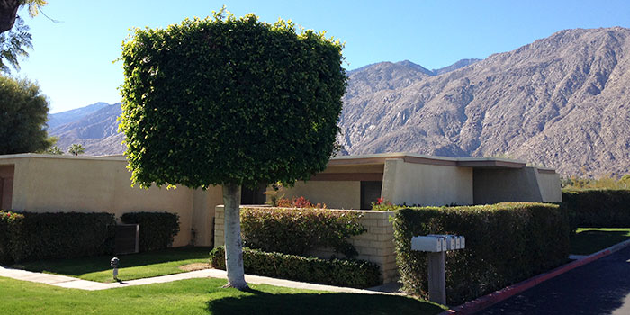 Rose Garden Palm Springs Condos Amp Apartments For Sale
