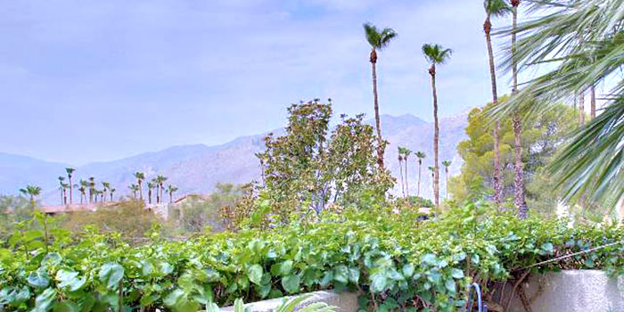 Villa Caballeros Complex Palm Springs Real Estate For